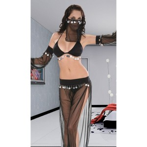 http://navihana.si/3486-29012-thickbox/kostum-arabska-princesa.jpg